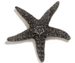 Modern Objects  Starfish Cabinet Knob ( Large)