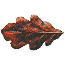 Notting Hill Cabinet Knob Oak Leaf Brass Hand Tinted