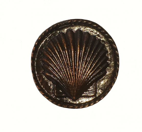 Buck Snort Lodge Decorative Hardware Cabinet Knob Small Sea Shell
